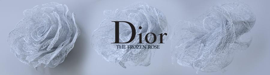 The Frosen Rose-Dior 360VR